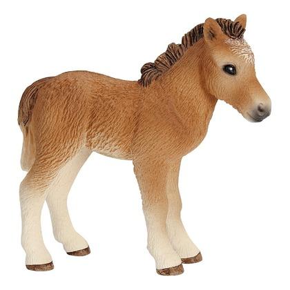 Дартмурский пони, жеребёнок