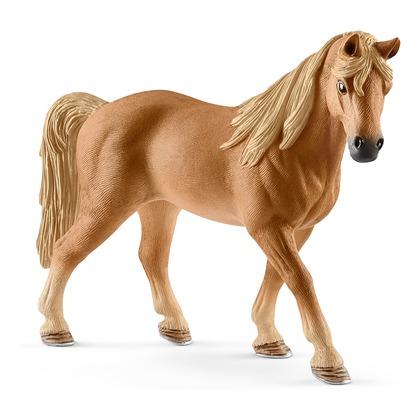 Теннесийская лошадь, кобыла
