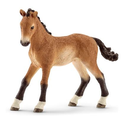Теннесийская лошадь, жеребёнок