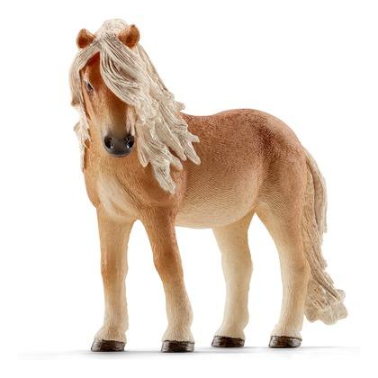 Исландский пони, кобыла