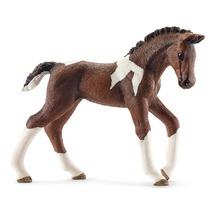 Тракененская лошадь, жеребёнок