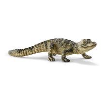 Аллигатор, детёныш