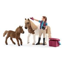 Конюх с шотладским пони