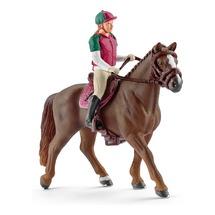Наездница с гнедой лошадью