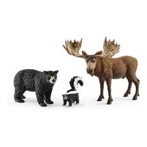 Жители лесов Северной Америки