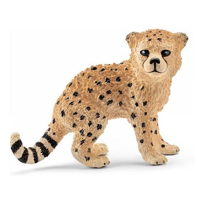 Гепард, детёныш