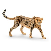 Гепард, самка