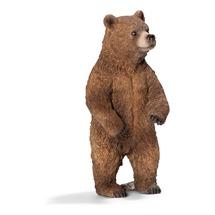 Медведь гризли, самка