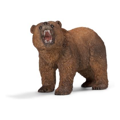 Медведь гризли, самец