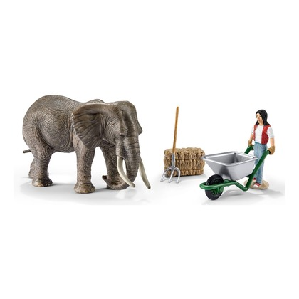 Набор Уход за слоном