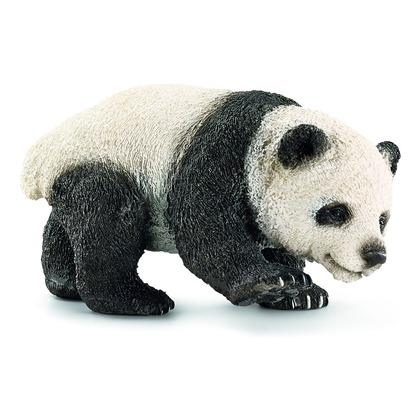 Панда, детёныш