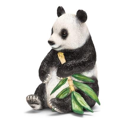 Панда, самец