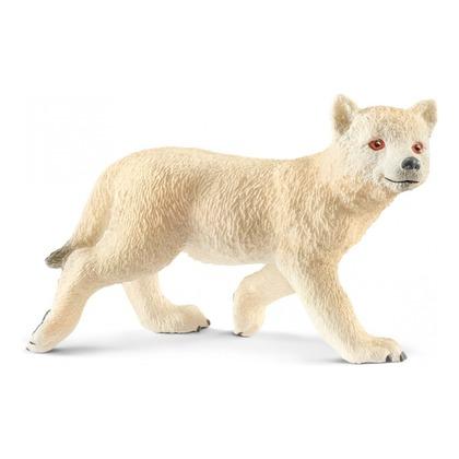 Мелвильский островной волчонок