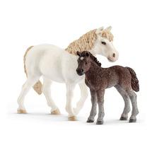 Пони и жеребенок Дартмурской породы