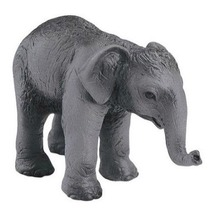 Индийский слон, детеныш