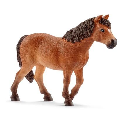 Дартмурский пони, кобыла