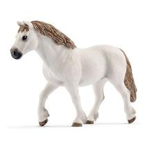 Уэльский пони, кобыла