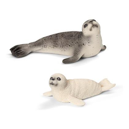 Семейство тюленей