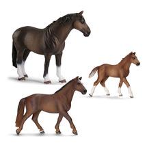 Лошади Ганноверской породы