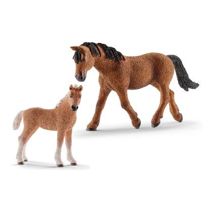 Лошади Башкирской породы