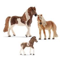 Лошади Исландской породы