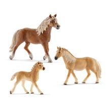 Лошади породы Хафлингер