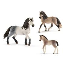 Лошади Андалузской породы