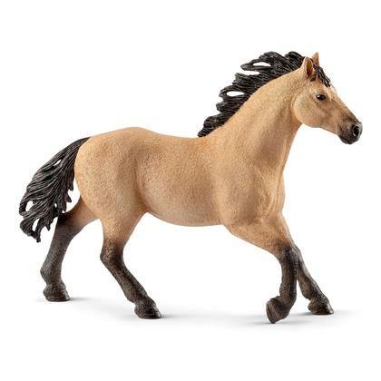 Четвертьмильная лошадь, жеребец