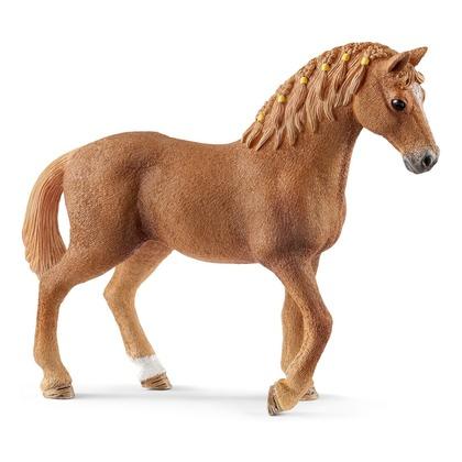 Четвертьмильная лошадь, кобыла