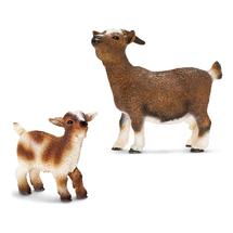Карликовый козёл с козлёнком