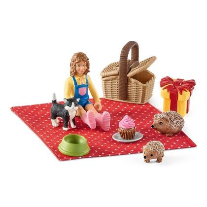 Набор Пикник в день рождения