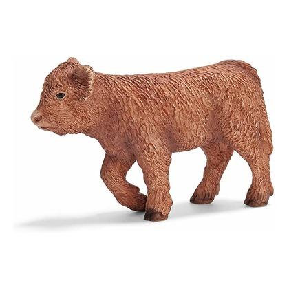 Северо-шотландский теленок