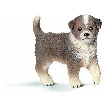 Австралийская овчарка, щенок