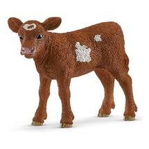 Техасский Лонгхорн, теленок