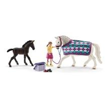 Набор Уход за Липпицианской лошадью и жеребенком