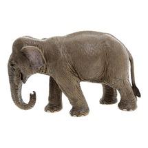 Азиатский слон, самка, стоит