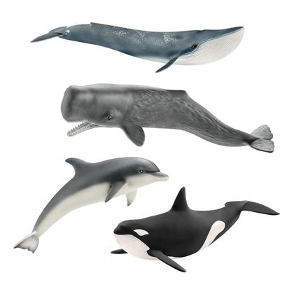 Набор Морские млекопитающие