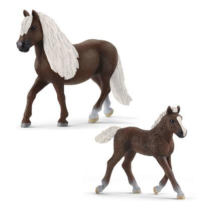 Лошади Шварцвальдской породы